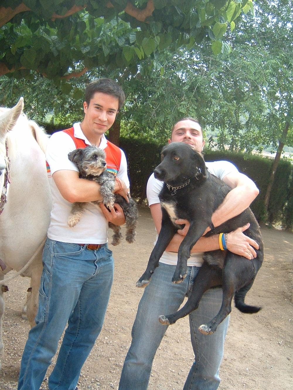 con perros